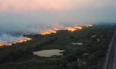 Amazónia está a chegar a um ponto de destruição sem retorno