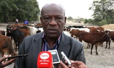 Angola precisa de 60 toneladas de fertilizantes