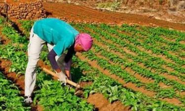 ADRA emprega mais de 300 mil USD em projectos sociais