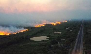 Amazónia perdeu 2,3 milhões de hectares em 2020