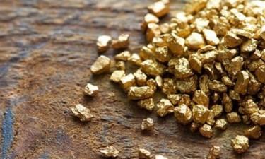 Mais de 100 empresas pedem licença para exploração de ouro