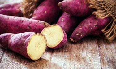 Produção de batata-doce e feijão dispara no Dombe Grande