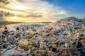 Ingerimos todos os anos 50 mil partículas de plástico
