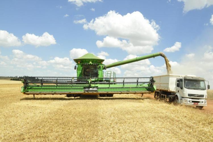 UA quer reduzir perdas pós-colheitas