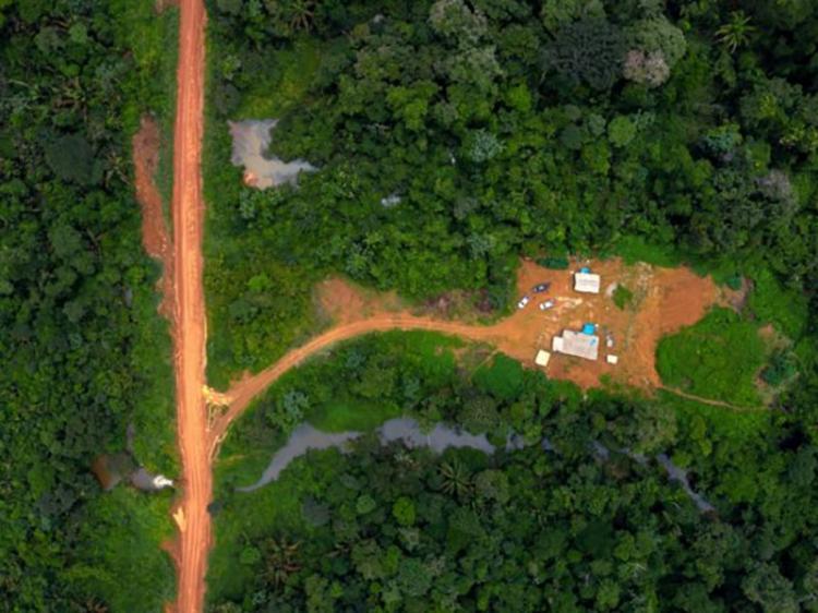 Desmatamento saltou 27% em um ano e ameaça floresta