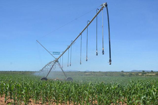 Escoamento agrícola com 1, 1 mil milhões AKZ