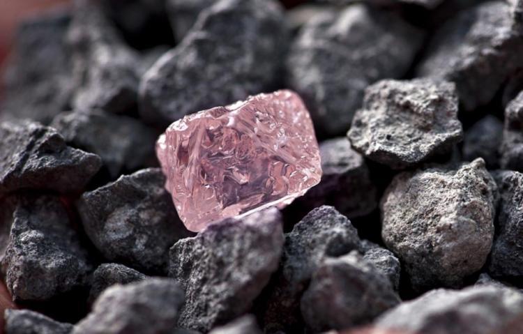 Diamante rosa transformado em três pedras polidas