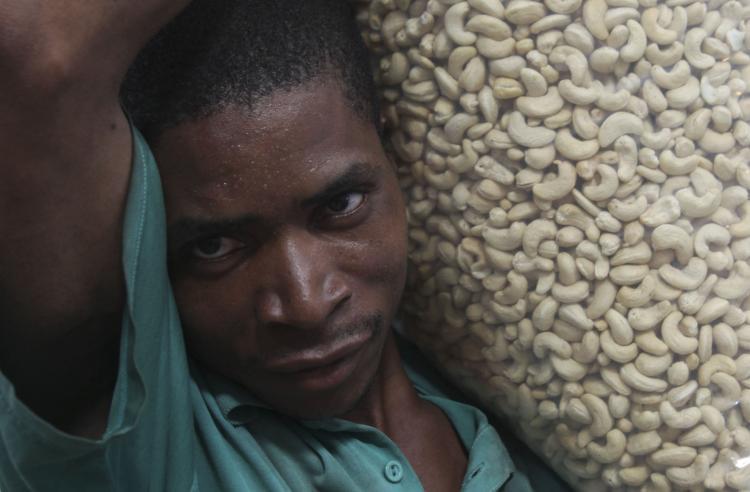 Multinacional Olam anuncia fecho de fábricas de castanha de caju