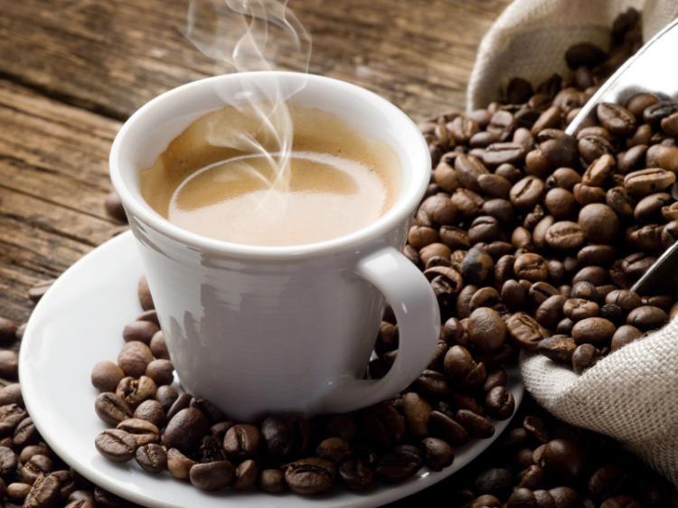 Café pode acelerar regeneração de florestas tropicais