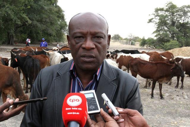 Agricultores familiares com reforço de 150 milhões de dólares