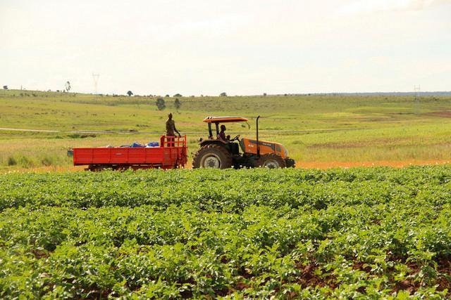 Mais de 230 fazendas em estado de abandono