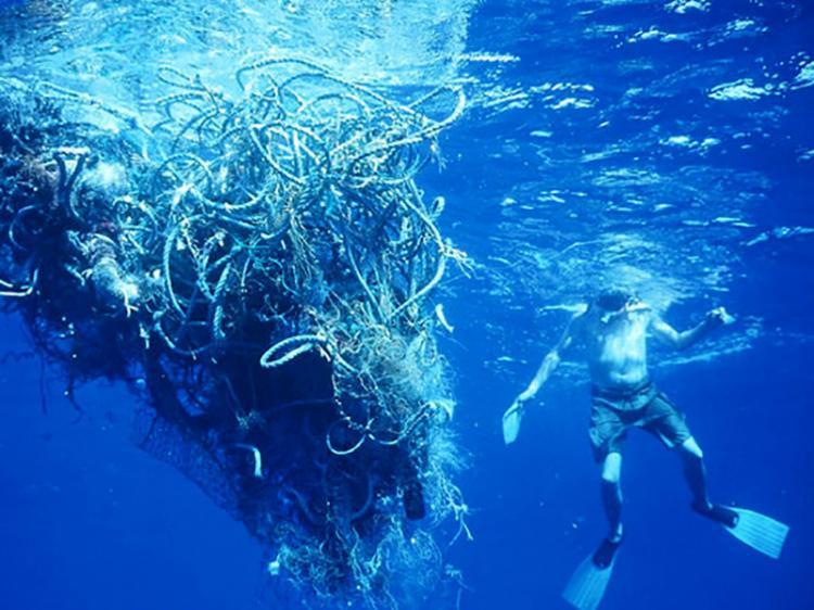 Haverá mais plástico do que peixe no mar