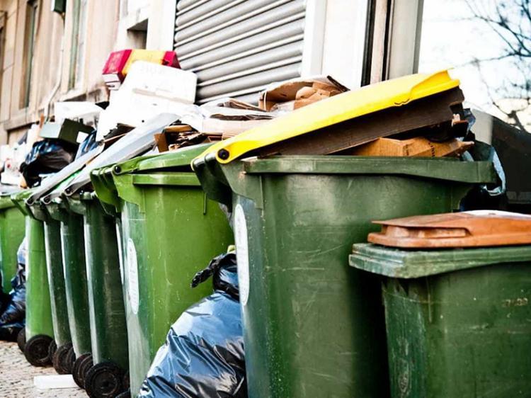 Plataforma de recolha de  lixo com crescimento